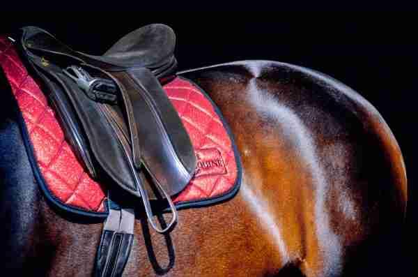 Ruby Red Sparkle Dressage Saddlepad