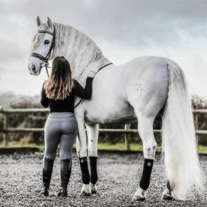Grey Rider Leggings