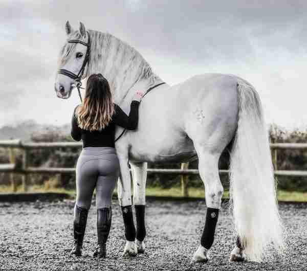 Grey Rider Leggings